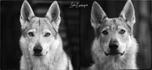Mom and son in black and white :)
