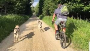 Biergartenfahrt durch den Dürnbucher Forst :)