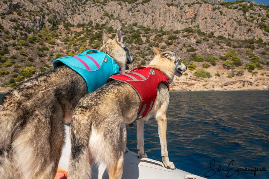 Reisen mit Hunden – Griechenland 2019