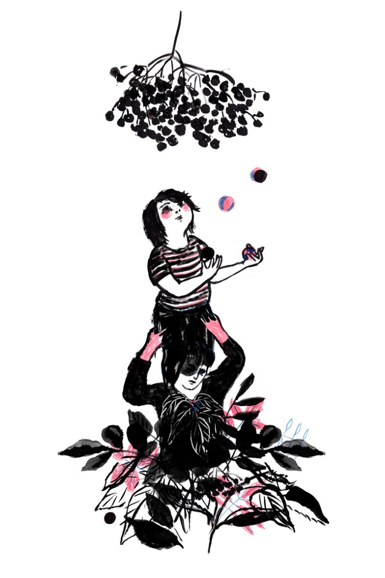 Illustration Silke Müller, Linz
