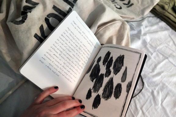 "Diary ""Christine Kollan"""