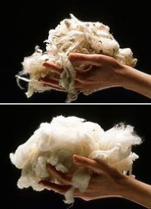 Sheep Wool, Silk Scarf China, Digital Silk Scarf, Wholesale Silk Scarf, Wool Scarf, Cashmere Scarf
