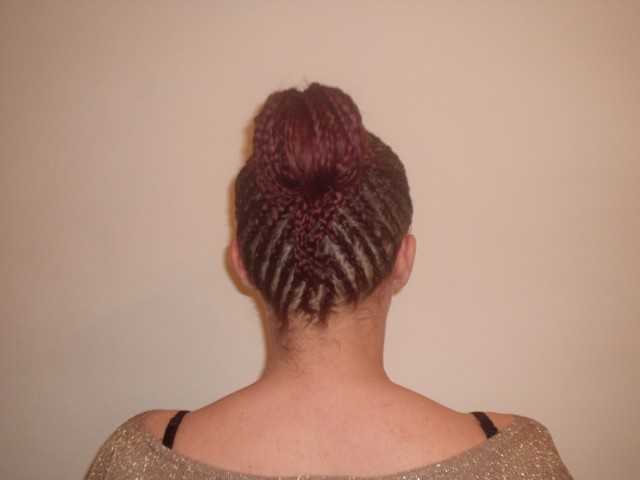 Braid Upstyle (Back)