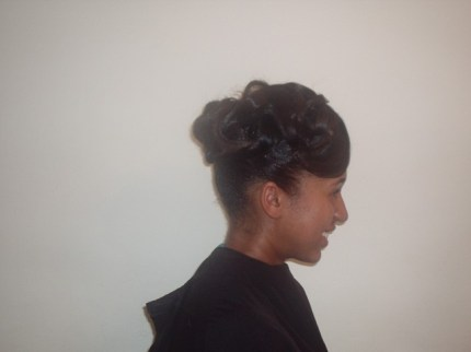 Natural Hair Updo (Side)