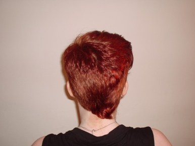 Short Crop Style with Fashion Colour (Back View)