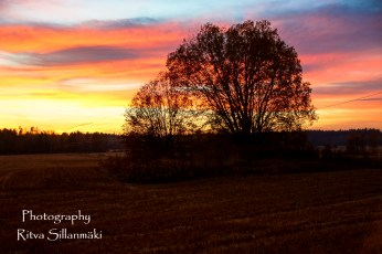 Country side autumn 2015 (155 of 179)
