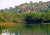 Goa India, Chapora River (1)