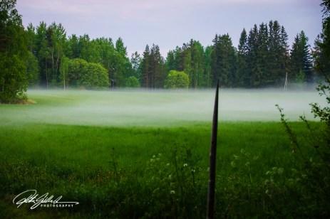misty summer eve-10