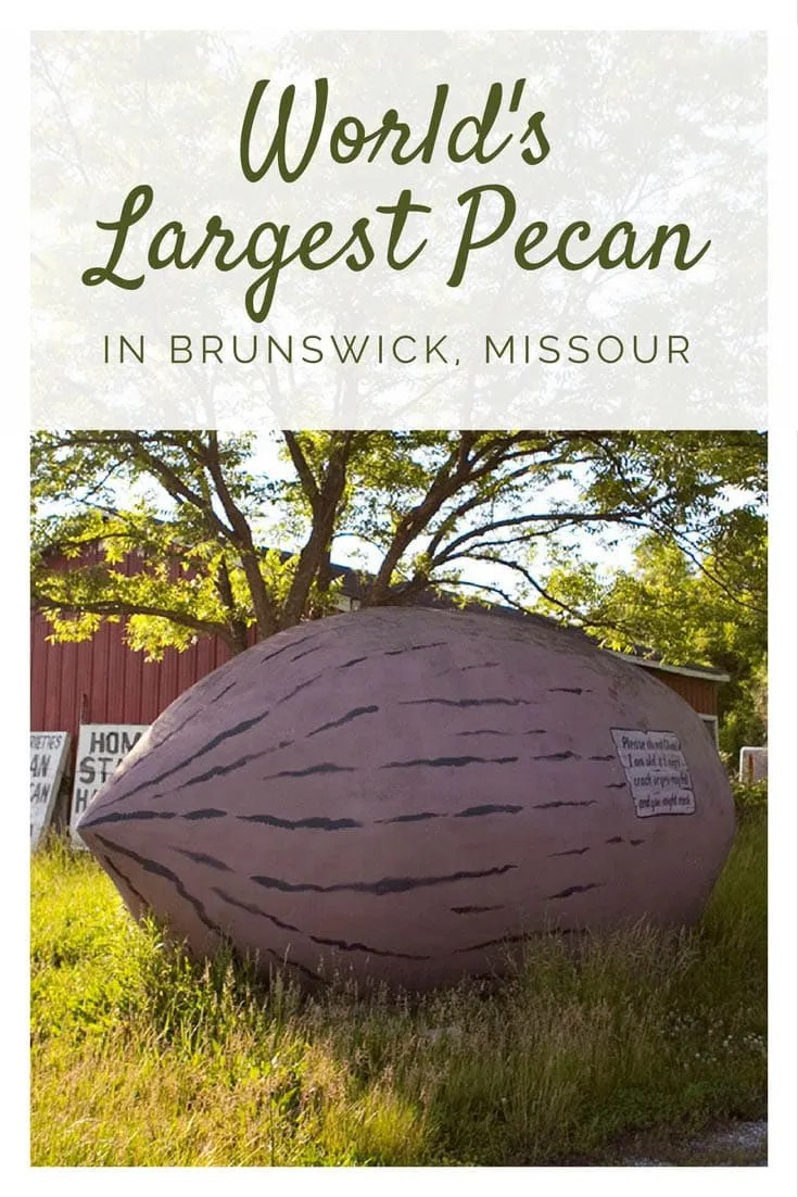 World's Largest Pecan in Brunswick, Missouri