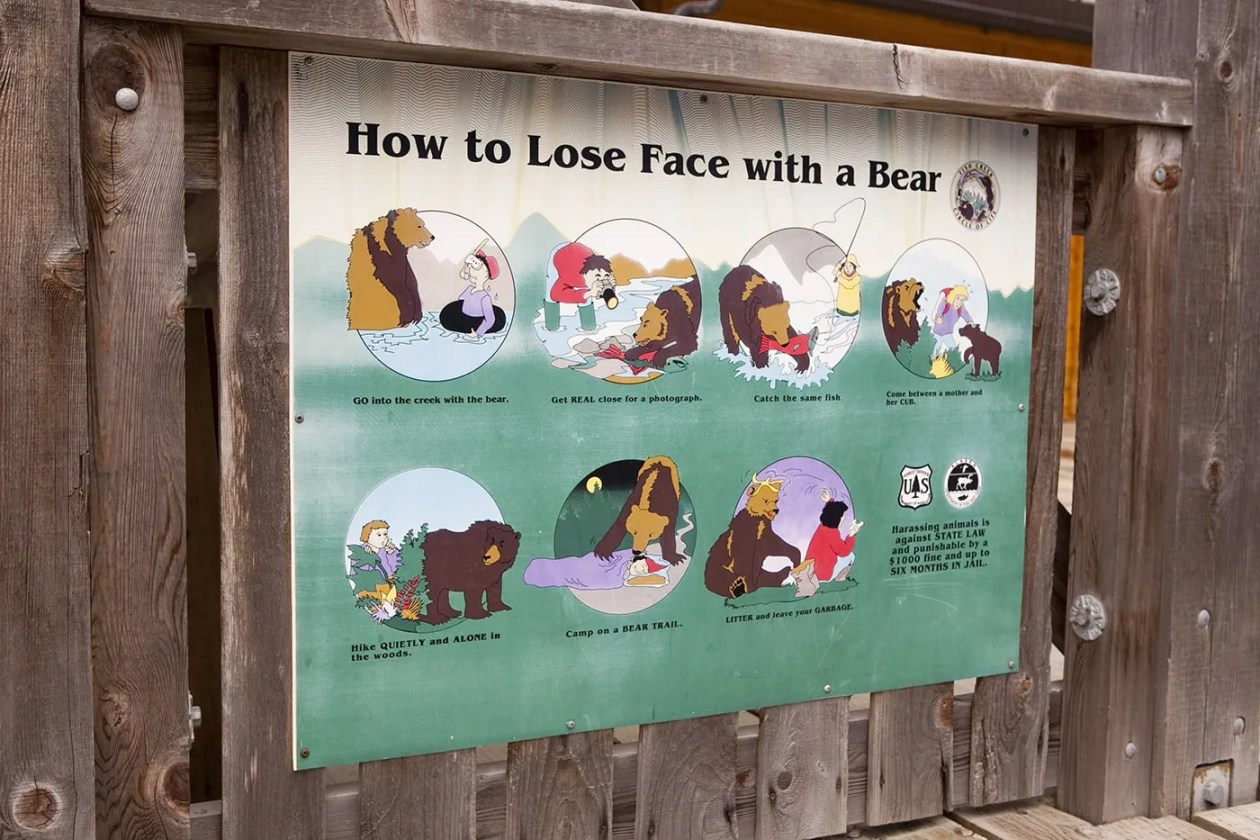 How to Lose Face with a Bear sign - at Fish Creek Wildlife Observation Site at the Tongass National Forest in Hyder, Alaska.
