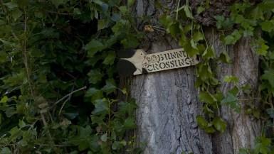 Bunny Crossing sign in Seattle, Washington