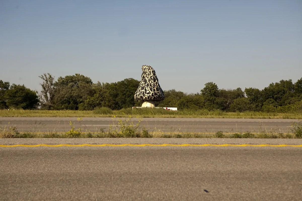 Giant Morel Mushroom, a roadside attraction in Nevada, Missouri.