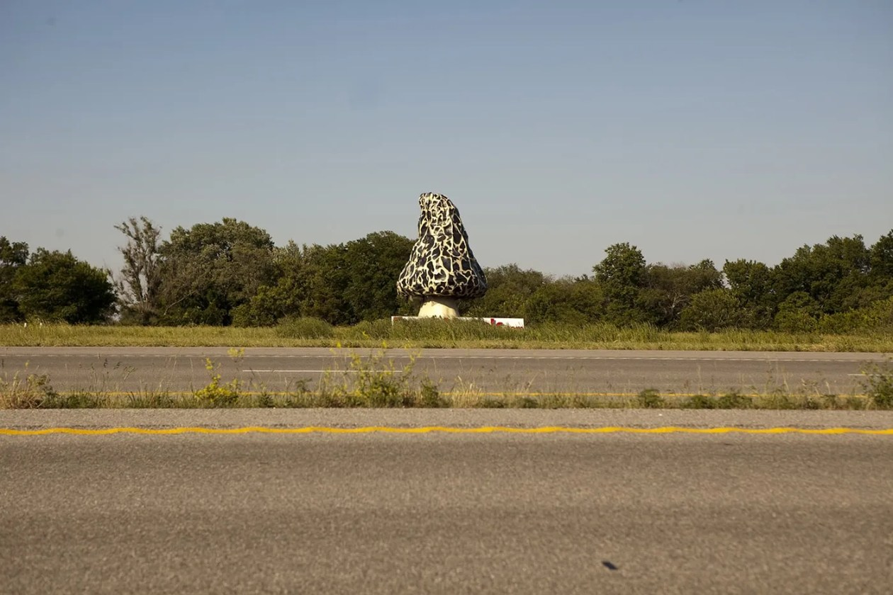 Giant Morel Mushroom, a roadside attraction in Nevada, Missouri.