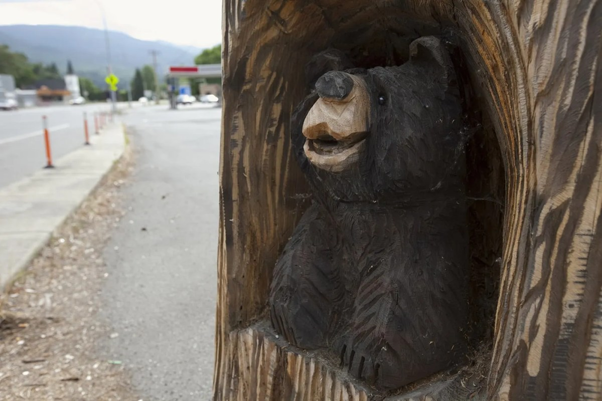 🐻 Little Roadside Tavern Bear in Everson, Washington.