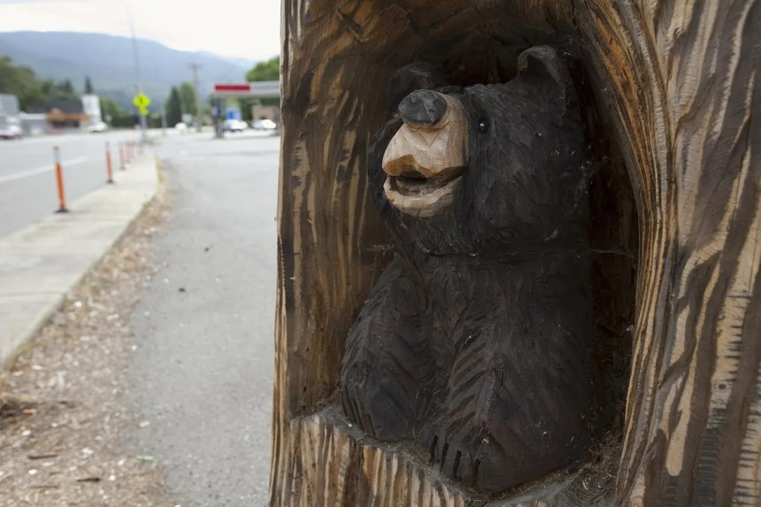 Little Roadside Tavern Bear in Everson, Washington - Carved bear roadside attraction outside of the Little Roadside Tavern in Everson, Washington.
