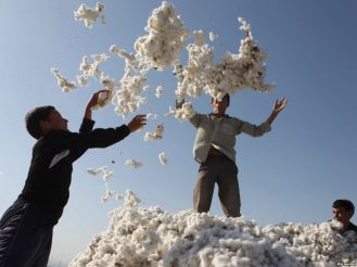 Children playing with cotton outside Ashgabat, Uzbekistan