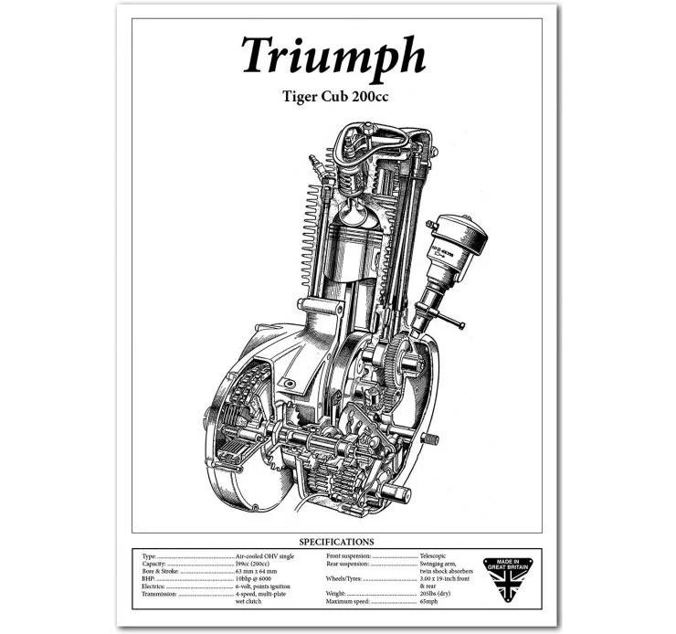 Triumph Tiger Cub Custom