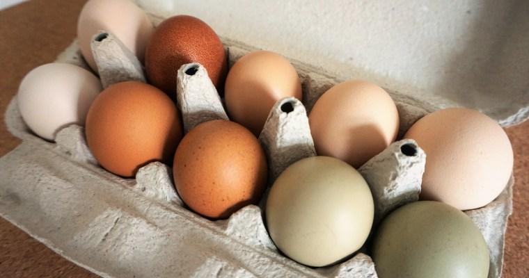 Maak van je Airfryer een Eifryer en kook of bak je eitjes erin!