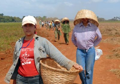 Las jóvenes cubanas participan activamente de las labores agrícolas, el 21 de Marzo de 2007, La Habana, Cuba. Foto: Calixto N. Llanes/Juventud Rebelde (CUBA)