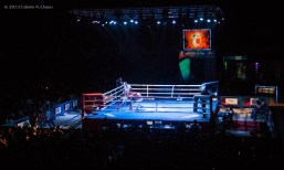 Ramon Luis, de los Domadores de Cuba, combate con Andrey Efremenko, de Rusia, en los 75 kg, durante la IV Serie Mundial de Boxeo (WSB), que tuvo lugar en el Coliseo de la Ciudad Deportiva, el viernes 6 de Diciembre de 2013, La Habana. FOTO: Calixto N. Llanes (CUBA)