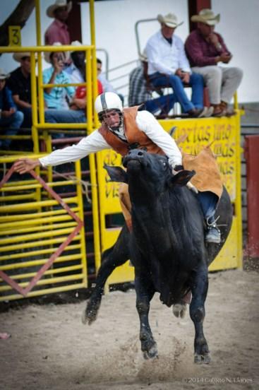 Vaqueros compiten en la monta de toros en la final del Campeonato Nacional de Rodeo entre Villa Clara y Sancti Spiritus, durante la Feria Internacional Agroindustrial Alimentaria (FIAGROP) de Rancho Boyeros el martes 18 de marzo de 2014 en La Habana, Cuba. FOTO de Calixto N. Llanes/Juventud Rebelde (CUBA)