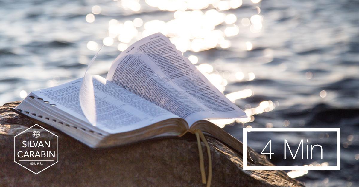 4 Tipps, wie ich die Bibel lese.