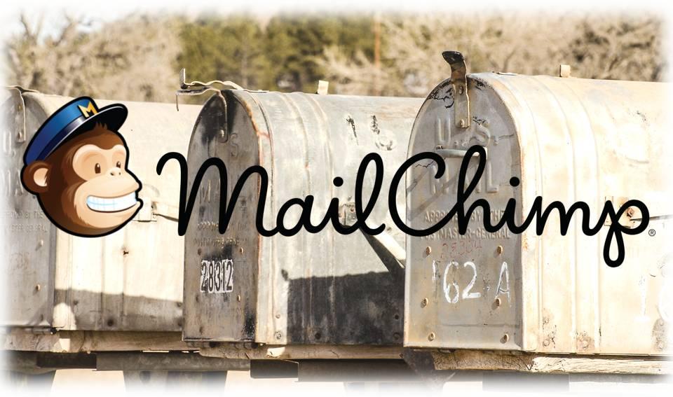 cursus nieuwsbrieven met mailchimp - Silvatica Marketing Den Bosch