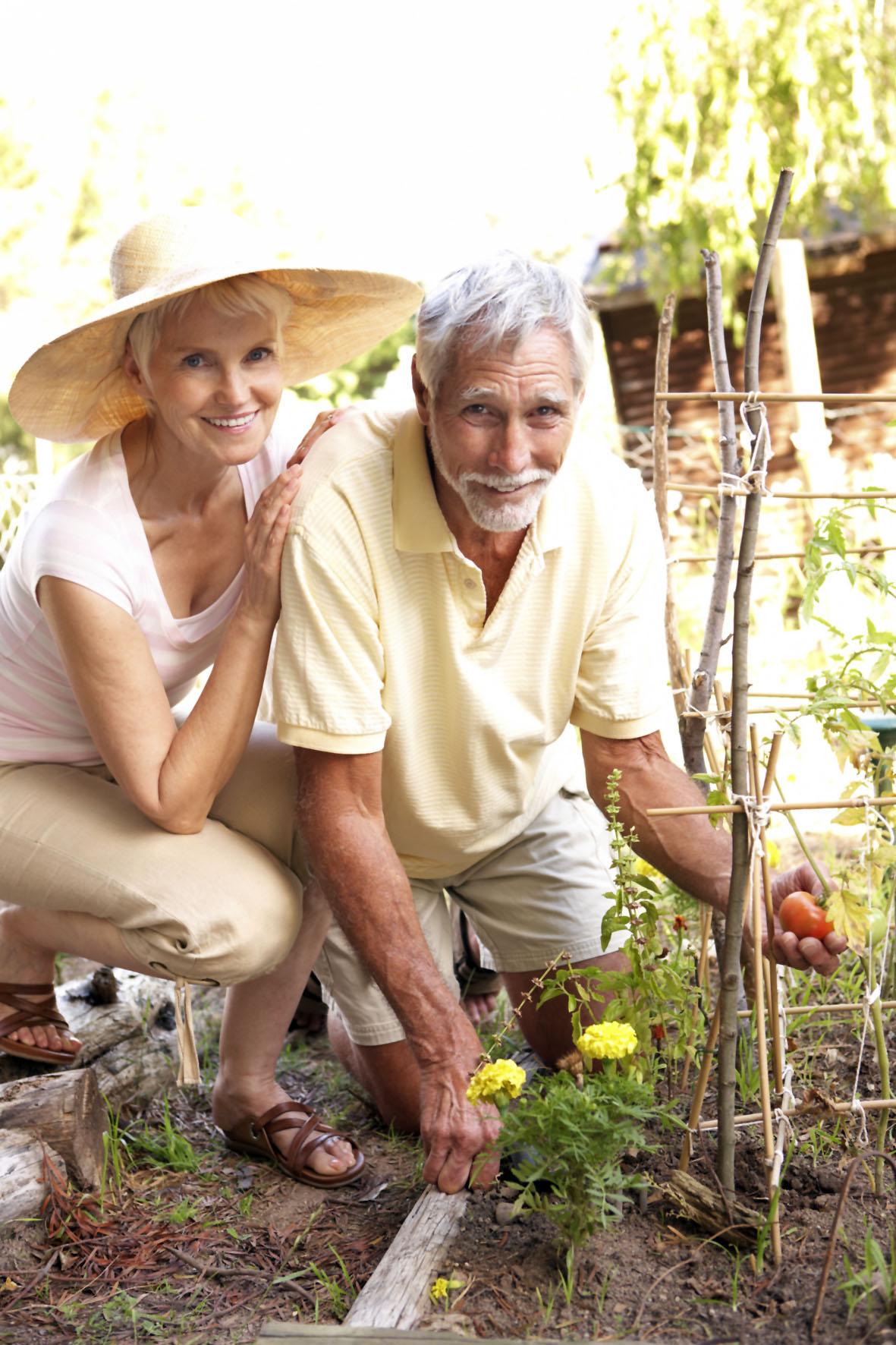 Gartenarbeit ist eine gute Möglichkeit, in Bewegung zu bleiben - vorausgesetzt man macht es auf gelenkschonende Weise.