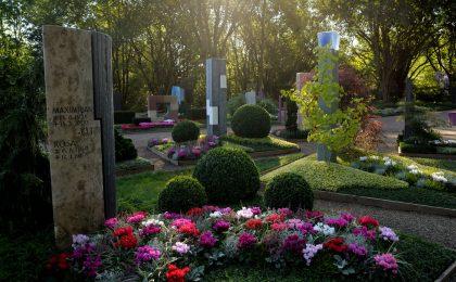 Herbststimmung auf dem Friedhof: Durch das Zusammenspiel von Licht und den sich verfärbenden Blättern entsteht eine besondere Atmosphäre.