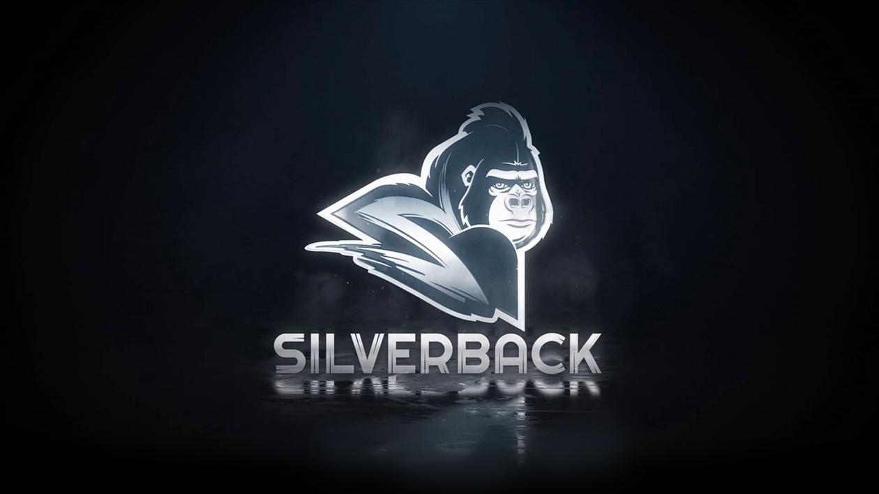 Homepage - Silverback Video LLC