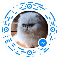 messenger_code_206815359370888