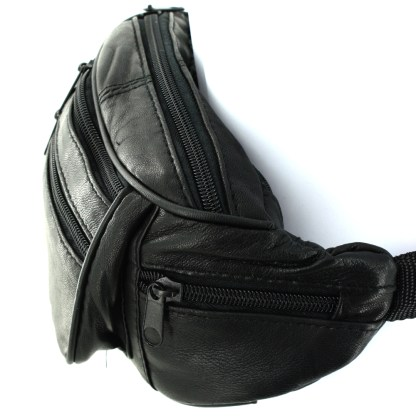 Silver Fever® 6 Pockets Fanny Pack