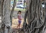 At the world famous Banyan Tree