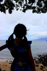 Looking out over the harbor in Lahaina