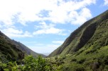 Iao valley state park 018