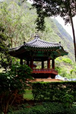 Iao valley state park 079