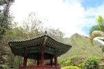 Iao valley state park 085