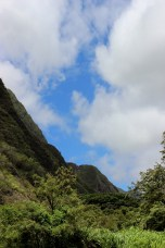 Iao valley state park 108