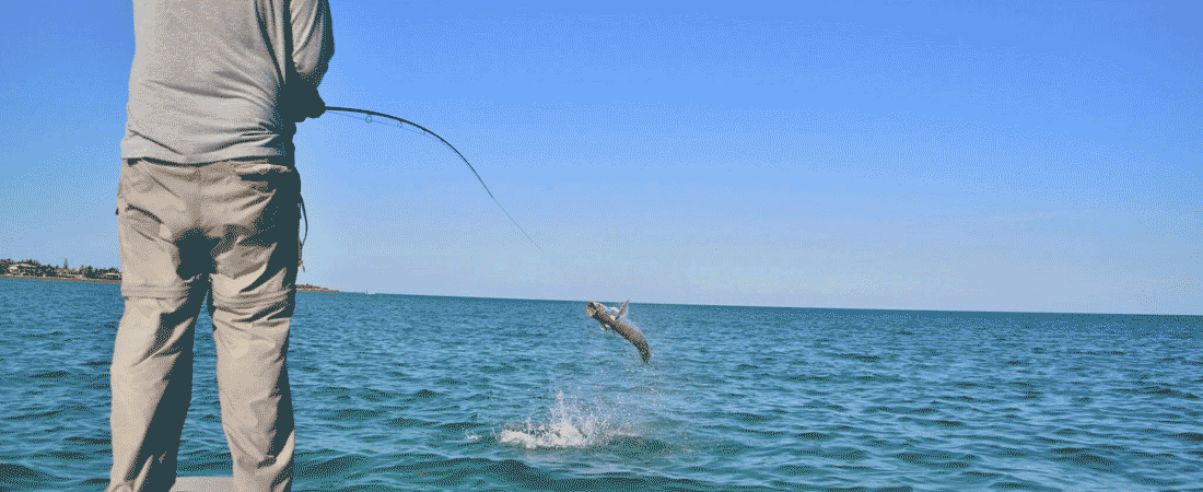 slider-tarpon-jumping1