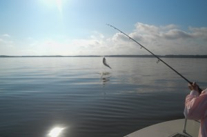 Great fishing during good weather days