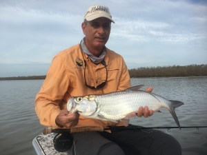 Flyfishing in the Everglades