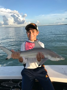 Shark fishing in Miami