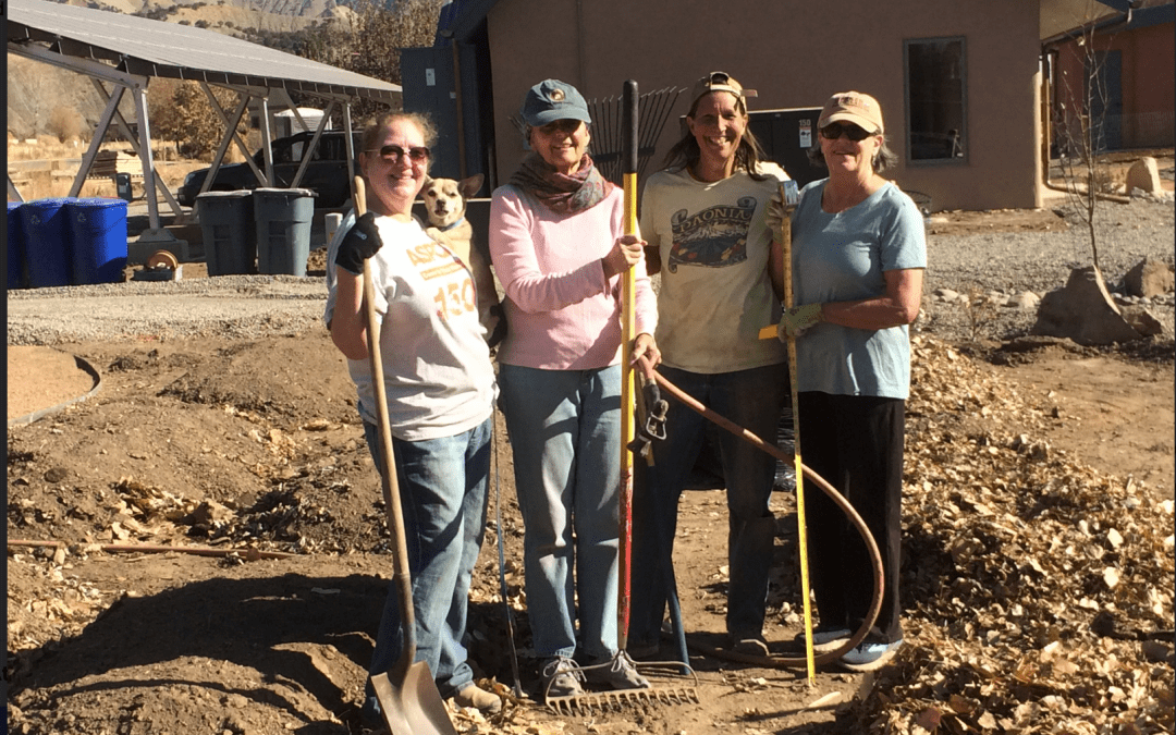 Gardens ready for spring planting at SilverLeaf!