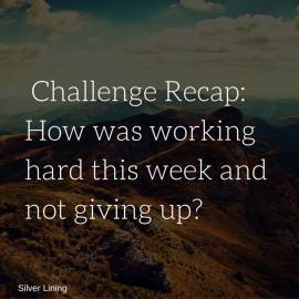 https://silverliningcommunity.wordpress.com/2016/01/30/challenge-recap-2/