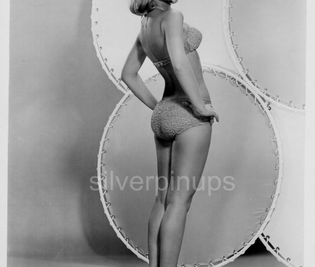 Orig  Barbara Eden In Bikini Sexy Rearview Pin Up Portrait