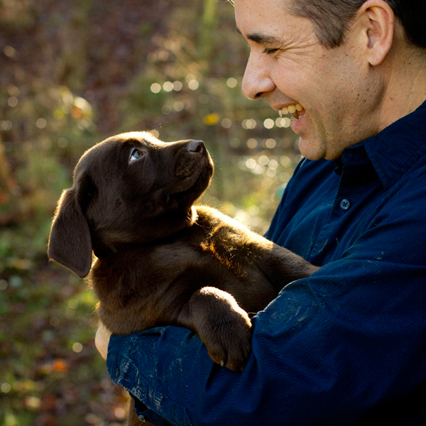 Silver Platter Chocolate and Silver Labradors in Oregon