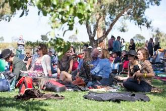 crowd-on-the-lawn-silver-raven-festival-2016-photo-credit-scott-washington