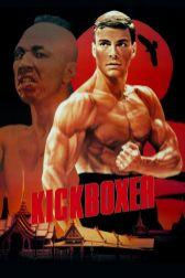 Poster - 7 Kickboxer