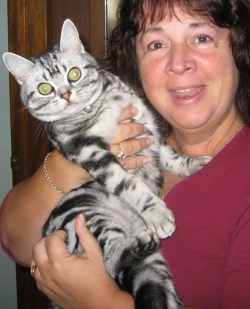 OP-Minnie-May-9-2012-woman-holding-American-Shorthair-silver-tabby-cat-with-large-green-eyes