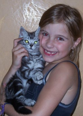 Image of girl hugging American Shorthair silver tabby kitten